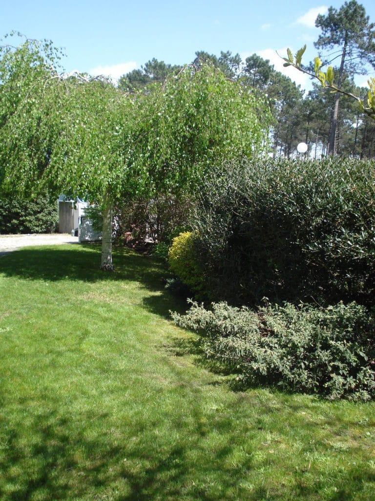 C t jardins cr ation et entretien de jardin sur for Entretien jardin 02